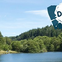 Free entry to Dalby Forest